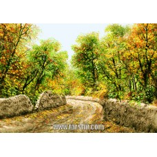 carpet-5057-farsh-228x228[1]